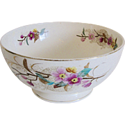 Antique Bowl Transferware Aesthetic