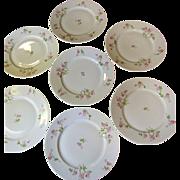 SALE Lovely Set of Seven Redon French Limoges Dinner Plates