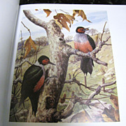 SOLD From Marsh to Mountain: The Art of Harry Curieux Adamson by Diane Inman
