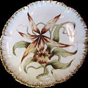SALE Antique1882 Haviland Limoges Hand Painted Cabinet Plate