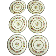 """6 Lovely  7 1/4"""" English Porcelain Floral Plates by Paragon"""