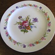 "Twelve Wentworth Japan Tulip 10"" Dinner Plates"