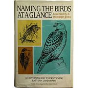 Naming the Birds at a Glance Blachy/Jenkins (1989, Hardcover)