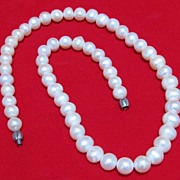 SALE Lovely Cultured Pearl Choker Necklace
