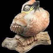 Boehm Bisque Bird  Figurine