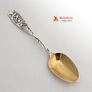 Pomona Pap Spoon Sterling Silver Towle 1887