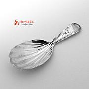English Tea Caddy Shell Bowl Spoon London Sterling Silver 1794