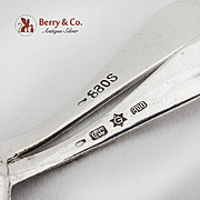 Ornate Sterling Silver Master Salt Spoon Sterling Silver 1890