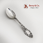 Blossom Teaspoon Sterling Silver Dominick and Haff 1905
