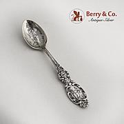 Boston Souvenir Demitasse Spoon Sterling Silver Paul Revere Handle Alvin 1900