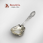 Passaic Sugar Spoon Sterling Silver Unger Brothers 1900