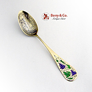 Grape Enamel Souvenir Spoon Sterling Silver Genesee Falls Rochester NY 1900