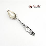 Princess Citrus Spoon Towle Sterling Silver 1892