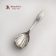 Vintage Sugar Shell Spoon Engraved Bowl Floral Pattern Sterling Silver