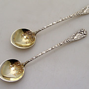 Chrysanthemum Chocolate Spoon Decorated Bowl Durgin Sterling Silver 1893