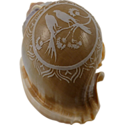 Vintage Cameo carved seashell