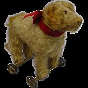 STEIFF SAINT BERNHARD PULL TOY DOG c1905-1927 WONDERFUL