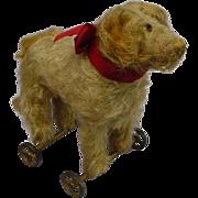 STEIFF - Saint Bernard Pull Toy Dog - c1905-1927 NICE!