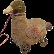 SALE Rare early Steiff Mallard Duck Pull Toy on Metal Wheels