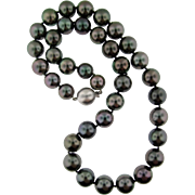 Spectacular Tahitian Pearl Necklace