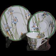 Vintage Royal Doulton Bone China Iris Pattern  Cup  Saucer  Desert Plate