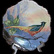 "Limoges Game Bird Plaque Flambeau Mark 11"" 1890-1914"
