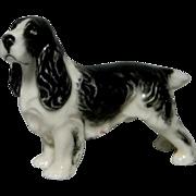 Royal Worcester Porcelain Springer Spaniel