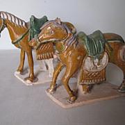 Chinese Ming Dynasty Sancai Glazed Horses