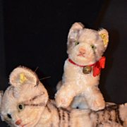 REDUCED Old Steiff Kitten Tiger Set Mohair Jointed Tabby Adorable Stuffed Animal