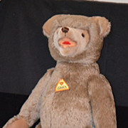 REDUCED Wonderful Teddy Bear Educa W/ Tag Jointed German Large For Doll