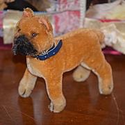 Old Steiff Boxer Dog Bull Dog Wonderful Doll Toy Button Ear Collar