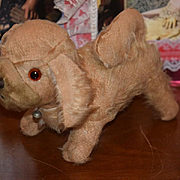 Old Dog Mohair A Doll's Best Friend So Cute Puppy!