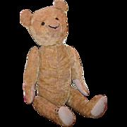 Vintage Teddy Bear Teddy Bears of Witney Unusual Smirk Mohair Jointed Artist