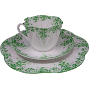 Vintage Shelley Dainty Green Bone China Trio: Tea Cup, Saucer, & Plate