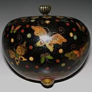 Antique  Japanese  Cloisonne Jar  of   Butterflies