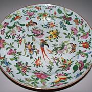 Antique Chinese Deep Plate with Phoenix, Butterflies, Melons Circa 1820