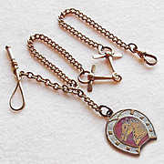 Antique HORSE FOB Brass & Enamel WATCH CHAIN or Necklace