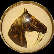 Vintage HORSE BRIDLE Rosette Glass Dome Slide