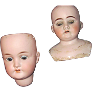 SOLD 2 German Bisque Doll Heads Glass Eyes Free P&I US Buyers