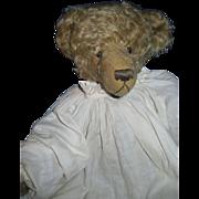 Vintage Artist Lori Baker Mohair Bear Free &I US Buyers