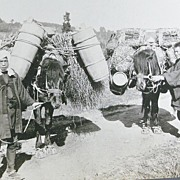 REDUCED Early photo Series of Japanese Farmers .