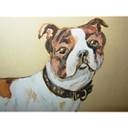 Great Gwash Illustration Painting of Bull Dog Signed 1909 on Paper