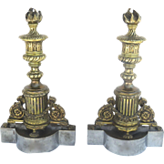 SALE PENDING 19th Century Pair of Gilt bronze and Steel Chenets