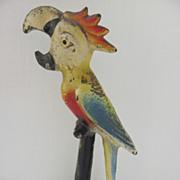 Cast Iron Parrot Bottle Opener by John Wright