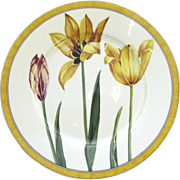 "Vintage Laure Japy Tulips Limoges Paris France 10 1/2"" Dinner"