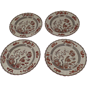 """4 x Vintage Spode India Indian Tree Rust Plates 10.25"""" Dinner"""
