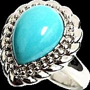 14K White Gold Kingman Robin Egg Blue Turquoise Ring