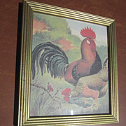 Set of Two Framed Prints of Championship Roosters and Hens