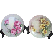 SALE Pair of Hand Painted Floral Plates