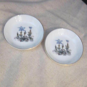 Vintage Pair of Royal Worcester Individual Butter Pat/Coaster Dishes